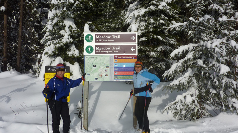 """XC Ski with a Silver star """"partners"""", like """"Ginny"""", and orient yourself at the start at one of the trail maps"""