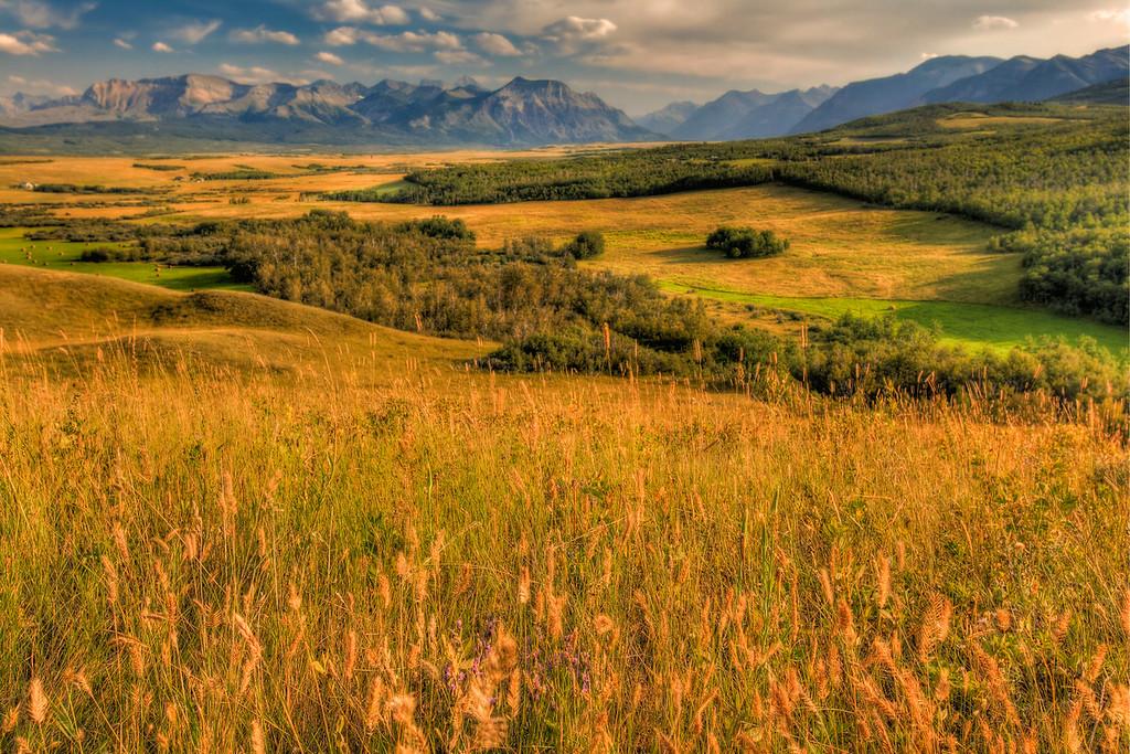 Where the Prairies Meet the Mountains in southern Alberta