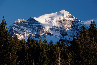 Mt Bosworth