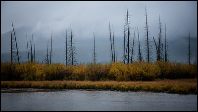 Rainy morning at Vermilion Lakes
