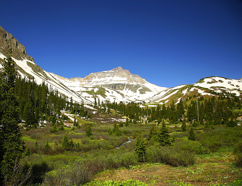 Yankee Boy Basin near Ouray, Colorado
