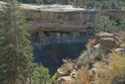 View of Cliff Palace from afar - Mesa Verde, Colorado