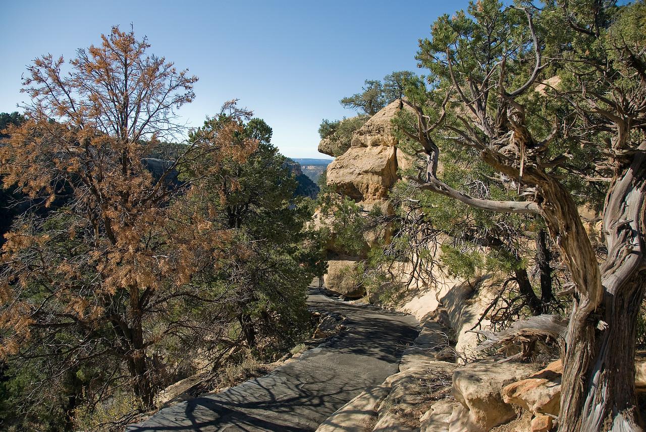 Paved walkway in Mesa Verde, Colorado