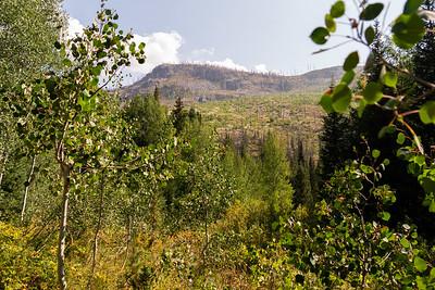 Colorado2018-MountZirkel-0013