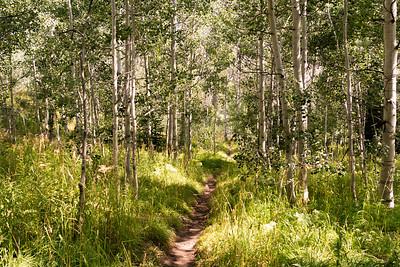 Colorado2018-MountZirkel-0004
