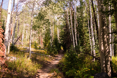 Colorado2018-MountZirkel-0011