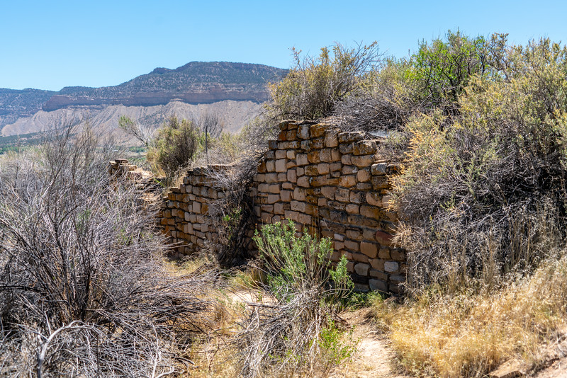 Some of the few visible remains at Yucca House