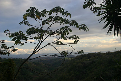 Alajuela region, central Costa Rica
