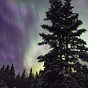 The aurora borealis can be quite a sight to see
