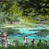 Swimmers prepare to enjoy Ichetucknee Springs