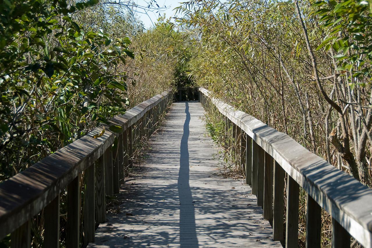 Wooden bridge inside Everglades National Park, Florida