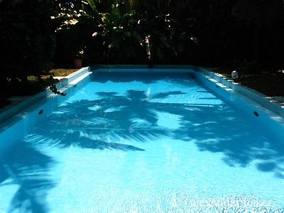 Ernest hemmingway's pool, Key West