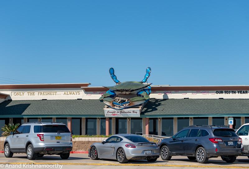 Galveston, Texas.