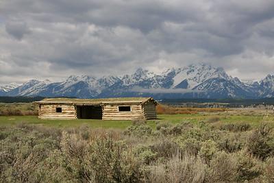 Grand Teton & Yellowstone 2008