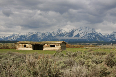 Grand Teton & Yellowstone 2008