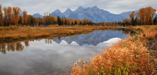 Schwabacher's Landing in Grand Teton