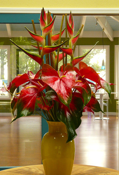 Anthirium arrangement in entrance hall of Waianuhea Bed and Breakfast