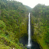 "Akaka Falls on The Big Island. Tips for visiting Akaka Falls State Park: <a href=""http://myitchytravelfeet.com/2014/02/27/take-waterfall-walk-akaka-falls-state-park/"">http://myitchytravelfeet.com/2014/02/27/take-waterfall-walk-akaka-falls-state-park/</a>"