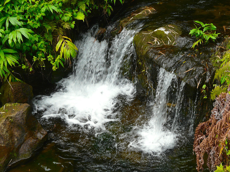 Boomer travel - Hawaii - Water trills over a creek at Akaka Falls State Park near Hilo, Hawaii. This is an easy travel adventure for boomers.