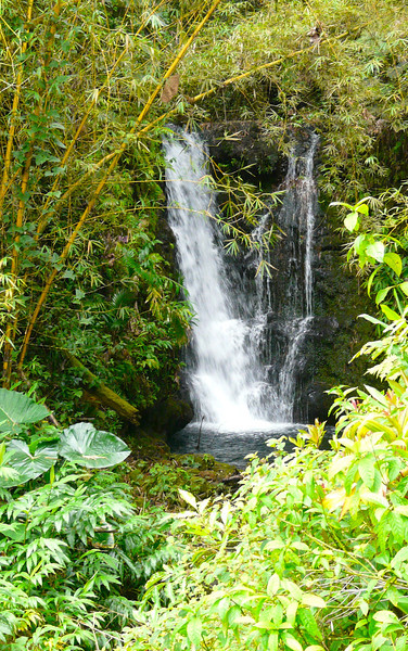 Boomer travel - Hawaii. At Akaka Falls State Park near Hilo, Hawaii, boomer travelers will see numerous waterfalls.