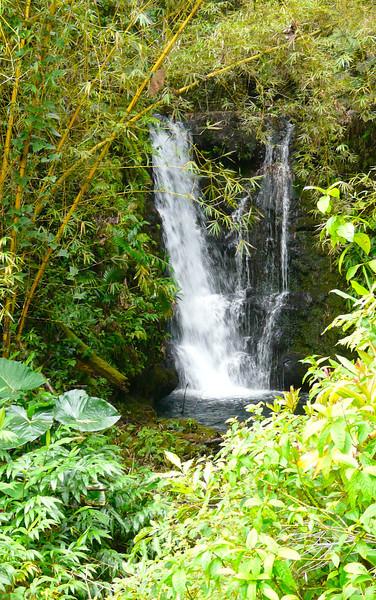 waterfall-akaka-falls-state-park