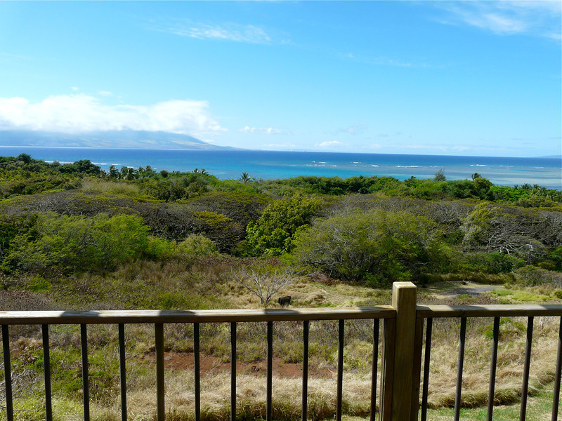 The view from Hilltop Cottage on Molokai