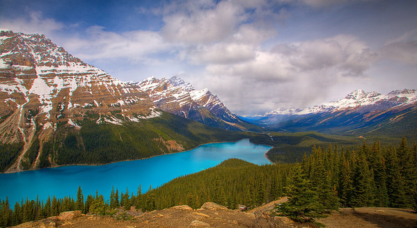 Peyto Lake with rain at far end (99688823)