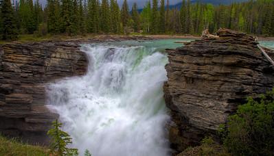 Athabasca Falls (99631662)