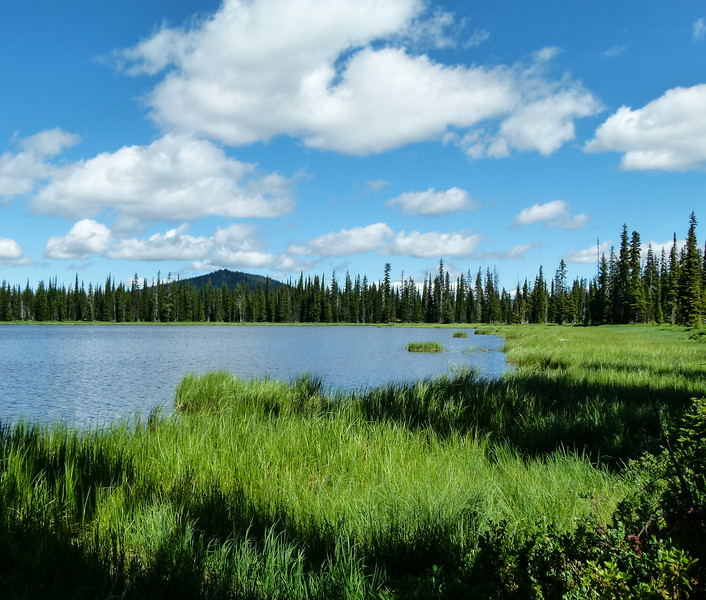Lily Lake on Elk Meadows Road, Idaho