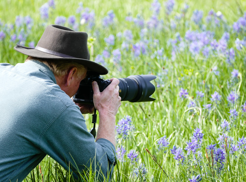 Man kneeling in the grass to take photo of blue flowers
