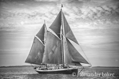 Maine Windjammer Cruise - Black and White & Tints