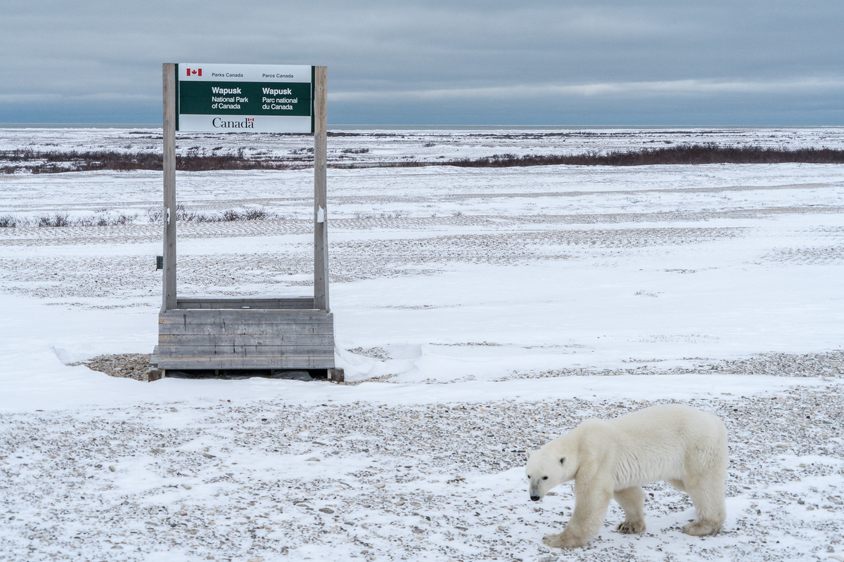 Wapusk National Park sign