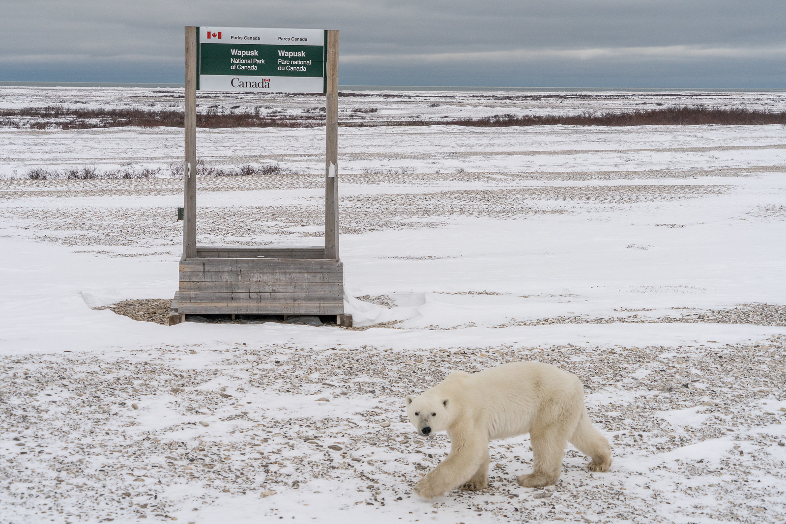 Wapusk National Park, Manitoba