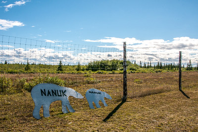 Fencing near Polar Bear lodge in Manitoba, Canada