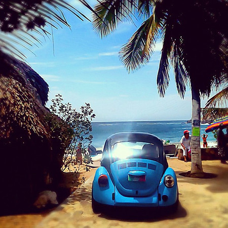 Bug at the beach, the Beetle obsession continues #Mazunte #Mexico