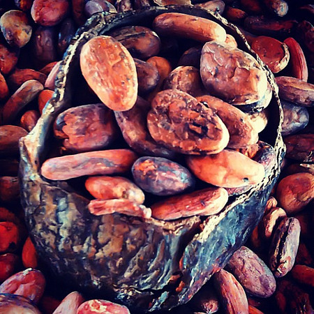 Where chocolate gets it's start -- Mayordomo, #Oaxaca #Mexico