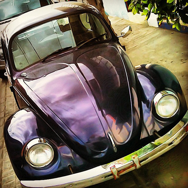 Shiny Beetle, the mid-life crisis I can afford #VW #bug #Oaxaca #Mexico