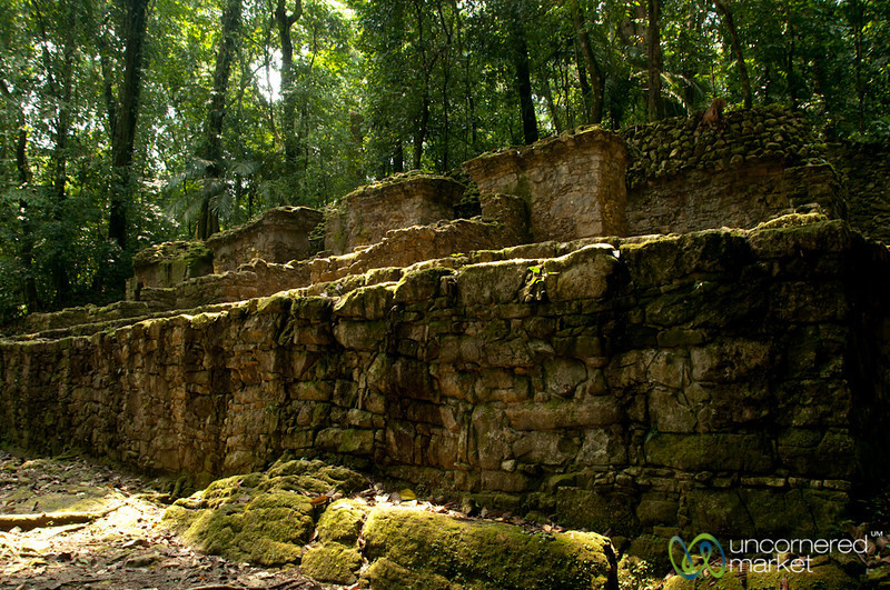 Palenque Mayan Ruins and Forest - Chiapas, Mexico