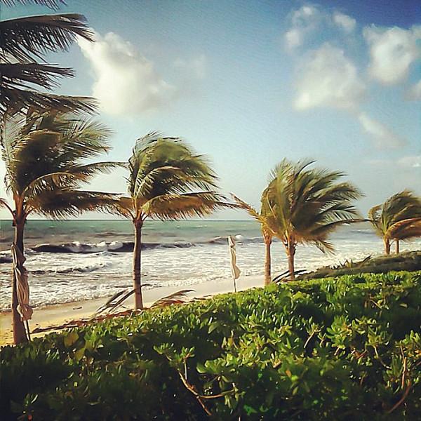 Morning view on the playa, Riviera Maya #wevisitmexico
