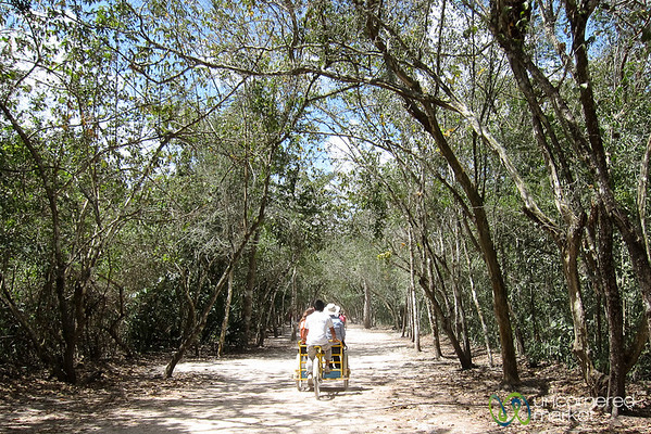 Bicycle Ride through Coba Ruins - Yucatan, Mexico