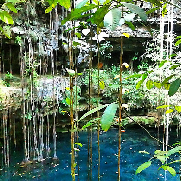 Late afternoon swim in a cenote, Riviera Maya #WeVisitMexico