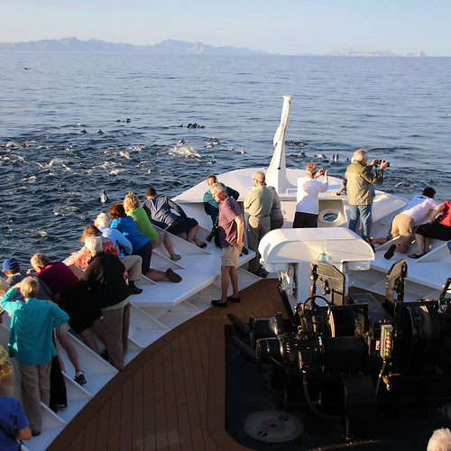Small Ship Cruise on UnCruise In the Sea of Cortez – Baja Sur, Mexico