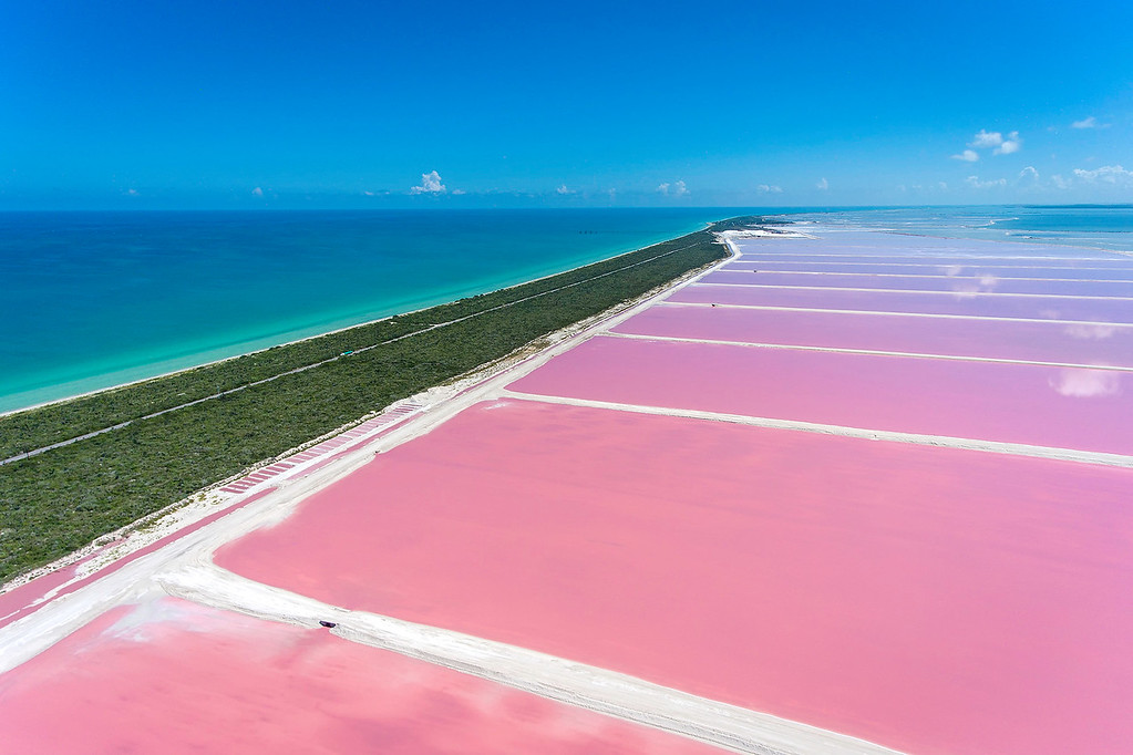 Las Coloradas Salt Production