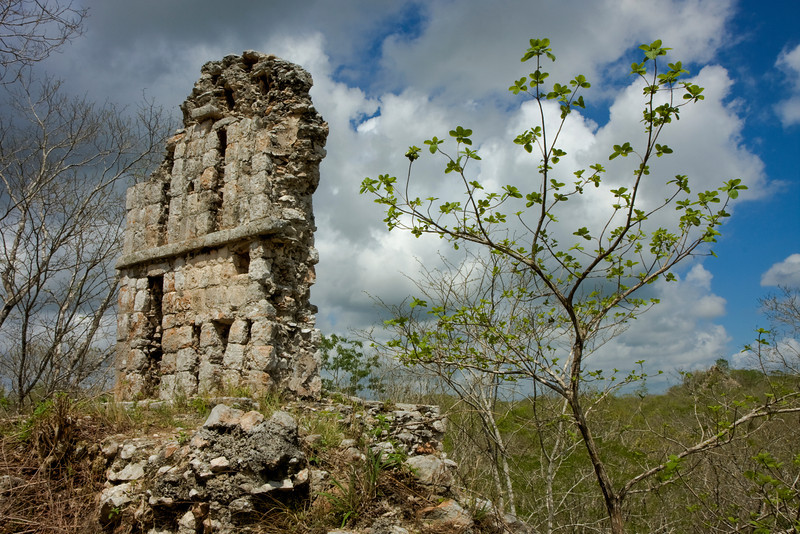 The Lone Wall Above Uxmal Ruins