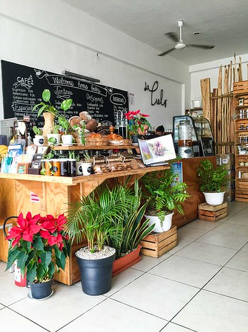 The 8 Best Restaurants In Tulum Mexico