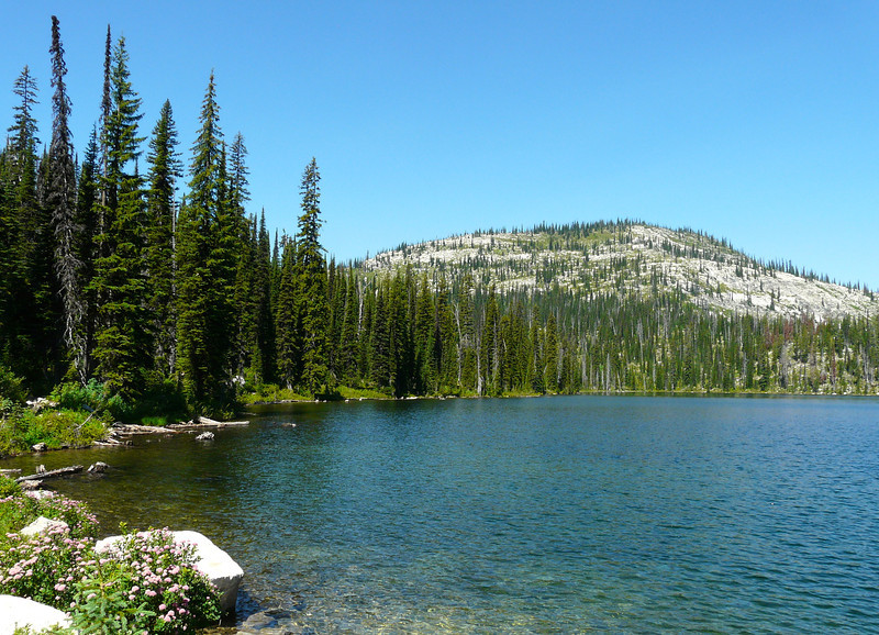 Blue sky, evergreen trees, wildflowers and a crystal clear lake in the Bitterroot Mountains.