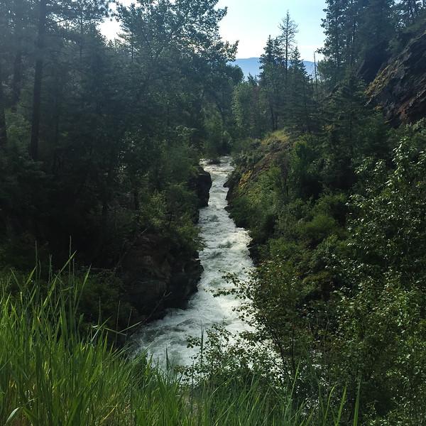 kootenai-creek-trail-mt-2