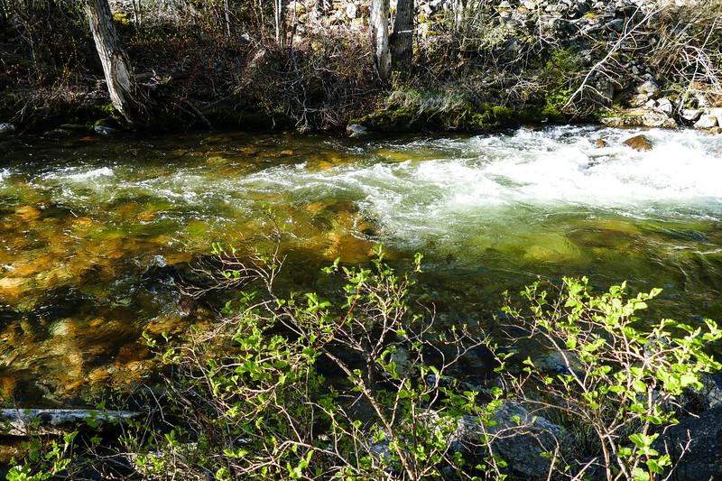 kootenai-creek