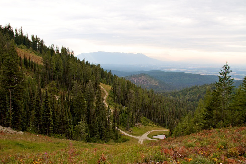 View from the Danny On Trail in Whitefish, Montana