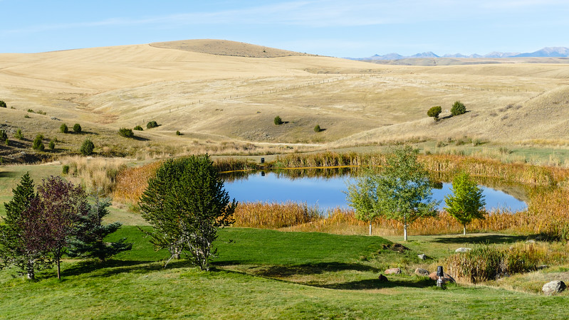 Beige grasslands surrounded a pond bordered by green grass and trees.